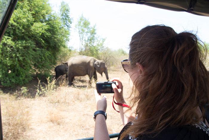 day10--Udawalawe-National-Park
