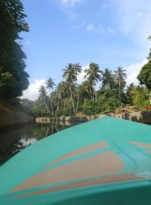 Boat Trip through the Jungle